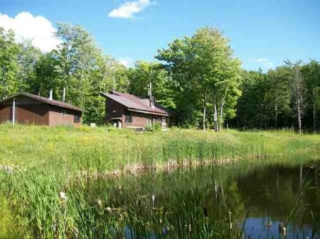 25356 Spring St Mls #1017087 : Covington : Baraga County : Michigan
