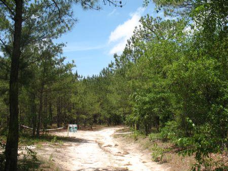 Tract #8941 : Kershaw : Kershaw County : South Carolina