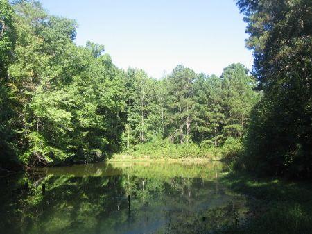 93 Acres With Flowing Creek : Greensboro : Greene County : Georgia