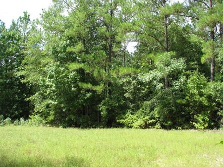 Manistee 745 : Frisco City : Monroe County : Alabama
