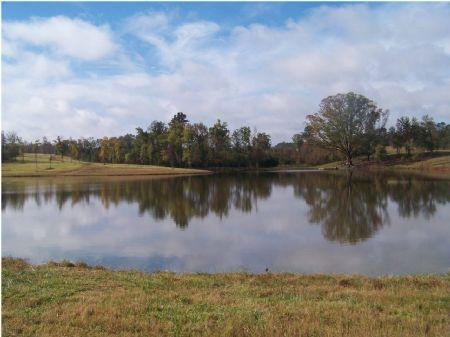 10 Acre Stocked Lake & Pasture : Crawfordville : Taliaferro County : Georgia