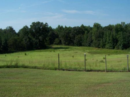 228 Acre Hunting Tract With Home : Americus : Sumter County : Georgia