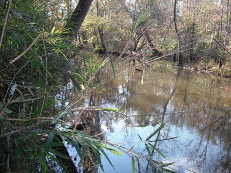 Flat Creek Tract : Jersey : Walton County : Georgia