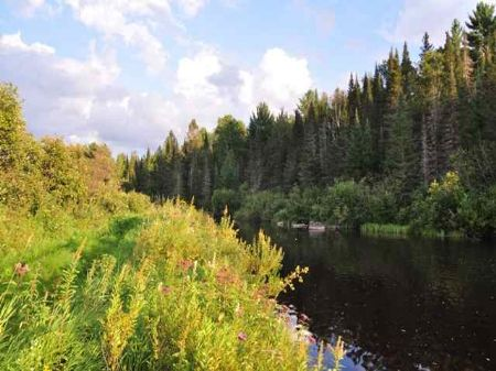 Tbd Pond Road  Mls #1056502 : Iron River : Iron County : Michigan