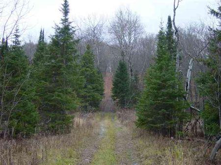 Tbd Hwy M28  Mls #1056525 : Covington : Baraga County : Michigan