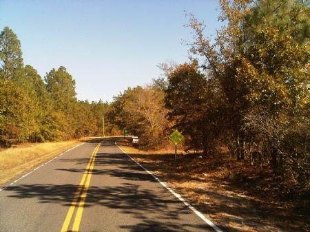5 Acres Under 5k Per : Pelion : Lexington County : South Carolina