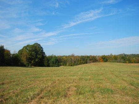 12 Acres With Beautiful Pasture : Pacolet : Spartanburg County : South Carolina