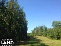 Tallapoosa Recreational Timber Trac