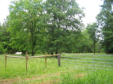 13.4 Acres, Pasture Free College Ed : Maxeys : Oglethorpe County : Georgia