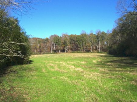 Beautiful Secluded Acreage : Baldwin : Banks County : Georgia