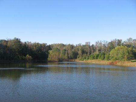 Beautiful Farm : Smithonia : Oglethorpe County : Georgia