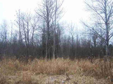 Tbd Helberg Road  Mls # 1076574 : Pelkie : Baraga County : Michigan