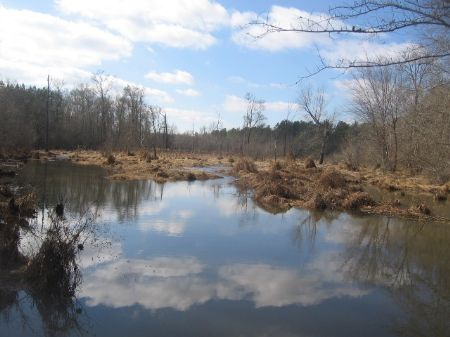 Private Hunting Tract : Lexington : Oglethorpe County : Georgia