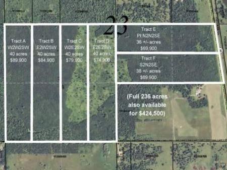 Hubbard, Helga, 1453323, 236 Ac : Bemidji : Hubbard County : Minnesota