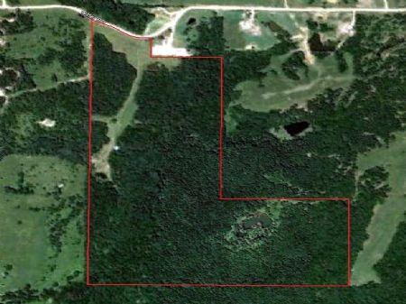 146 Acres Hunting Ground & Cabin : Milan : Sullivan County : Missouri