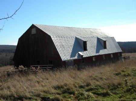 200 Acres Farm, Farmland, Horses : Hornby : Steuben County : New York
