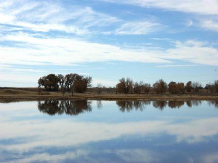 Wild Wings Hunting Land : Fort Morgan : Morgan County : Colorado