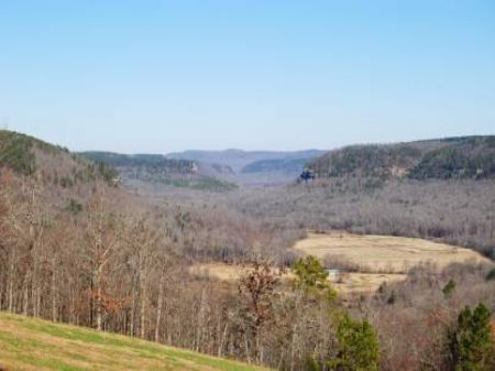 Selling At Auction June 22, 2012 : Mountain View : Stone County : Arkansas