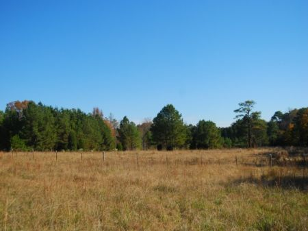 10 Acre Mini-farm : Chester : Chester County : South Carolina