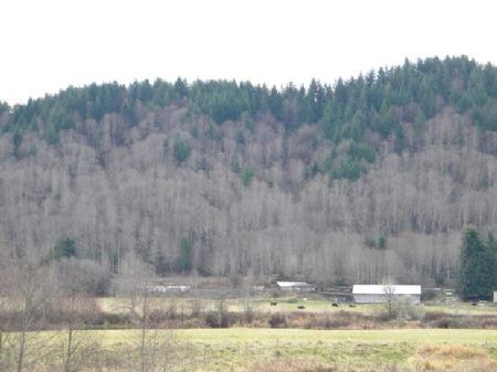 Farmland On The Chehalis River : Elma : Grays Harbor County : Washington