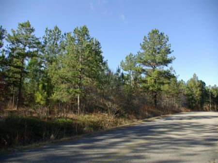 36 Acres - Half Mile Of Rd Frontage : Steele : Saint Clair County : Alabama
