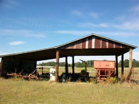 Beautiful Irrigated Country Farm : Cochran : Bleckley County : Georgia