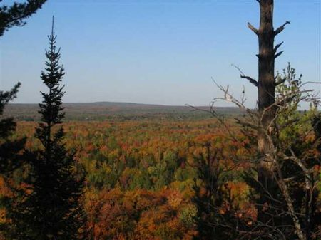 Tbd Off Celotex Rd  Mls #1057065 : Michigamme : Baraga County : Michigan