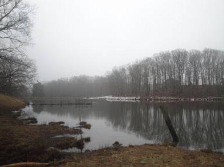 Beautiful Waterfront Lot : Monroe : Walton County : Georgia