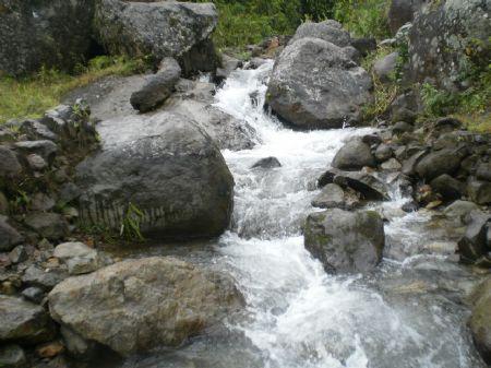 70 Ac. Woods, Creeks, Pasture, View : Orosi Cartago : Costa Rica