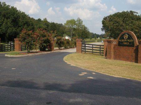 5 Ac. - Lot 3 In Meadow Wood Trails : Trenton : Gilchrist County : Florida