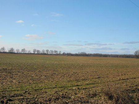 600 Acres Famland/timber : Poplar Grove : Phillips County : Arkansas