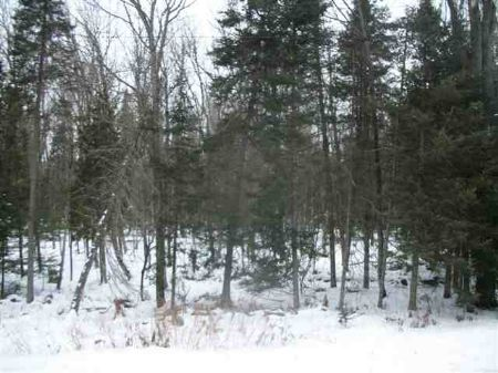 Tbd Stager Lake Road  Mls #1057467 : Crystal Falls : Iron County : Michigan