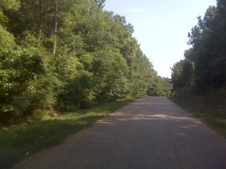 22073sb028 Tack Allen : Ouachita : Ouachita Parish : Louisiana