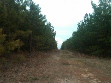 Mineral Springs : Calhoun : Ouachita Parish : Louisiana