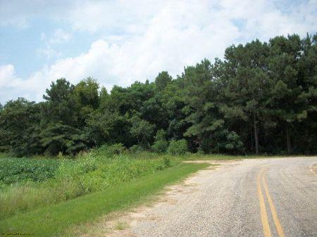 Bishopville : Bishopville : Lee County : South Carolina
