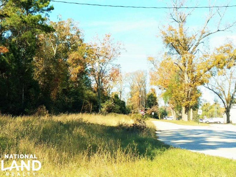 Coldspring Development Tract : Coldspring : San Jacinto County : Texas