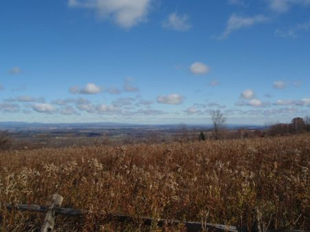 51+ Acres Private Country Setting : Sharon : Schoharie County : New York