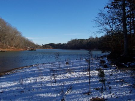 54 +/- Acres On Lake Hartwell : Lavonia : Franklin County : Georgia