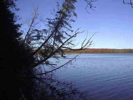 Tbd Chaney Lake Rd  Mls #1066267 : Wakefield : Gogebic County : Michigan
