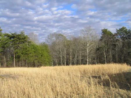 Country Escape  9.7 Acres, : Palmer : Grundy County : Tennessee
