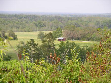 Ockerman Farm : Falkville : Morgan County : Alabama