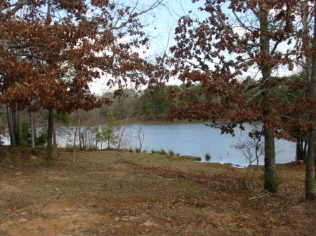 40 Acres Of Heaven : Letohatchee : Lowndes County : Alabama