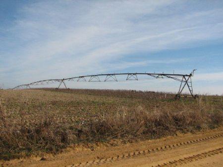 Southland Farm : Millen : Jenkins County : Georgia