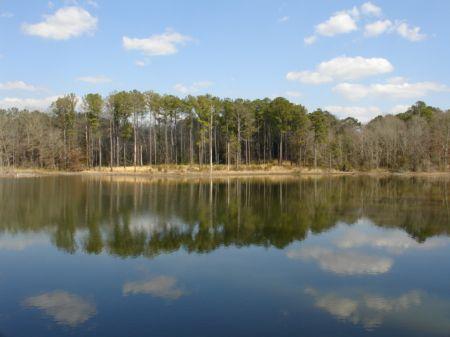 328 Acres In The Black Belt : Ramer : Montgomery County : Alabama