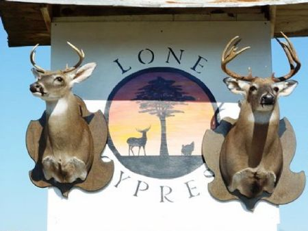 Lone Cypress Ranch : Aucilla : Jefferson County : Florida