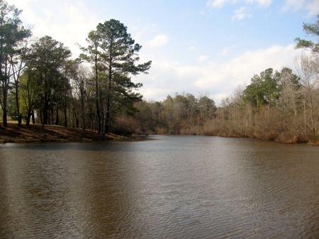 213 Acres Farm : Wrightsville : Johnson County : Georgia