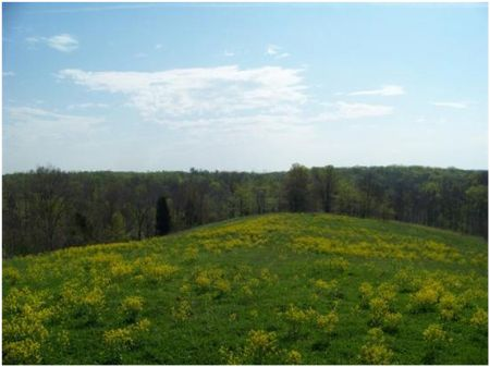 Scenic, Accessible 2,627 Acre Tract : Georgetown : Scott County : Kentucky