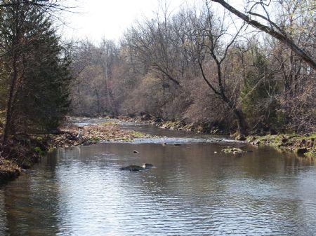 White River Acreage 193 : Marcella : Stone County : Arkansas