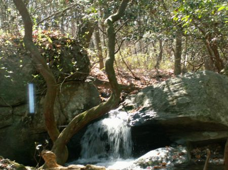 146.5 Ac On Sellers Rd. : Franklin : Heard County : Georgia
