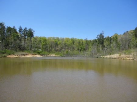 Timber Tract With 2 Ponds : Madison : Morgan County : Georgia